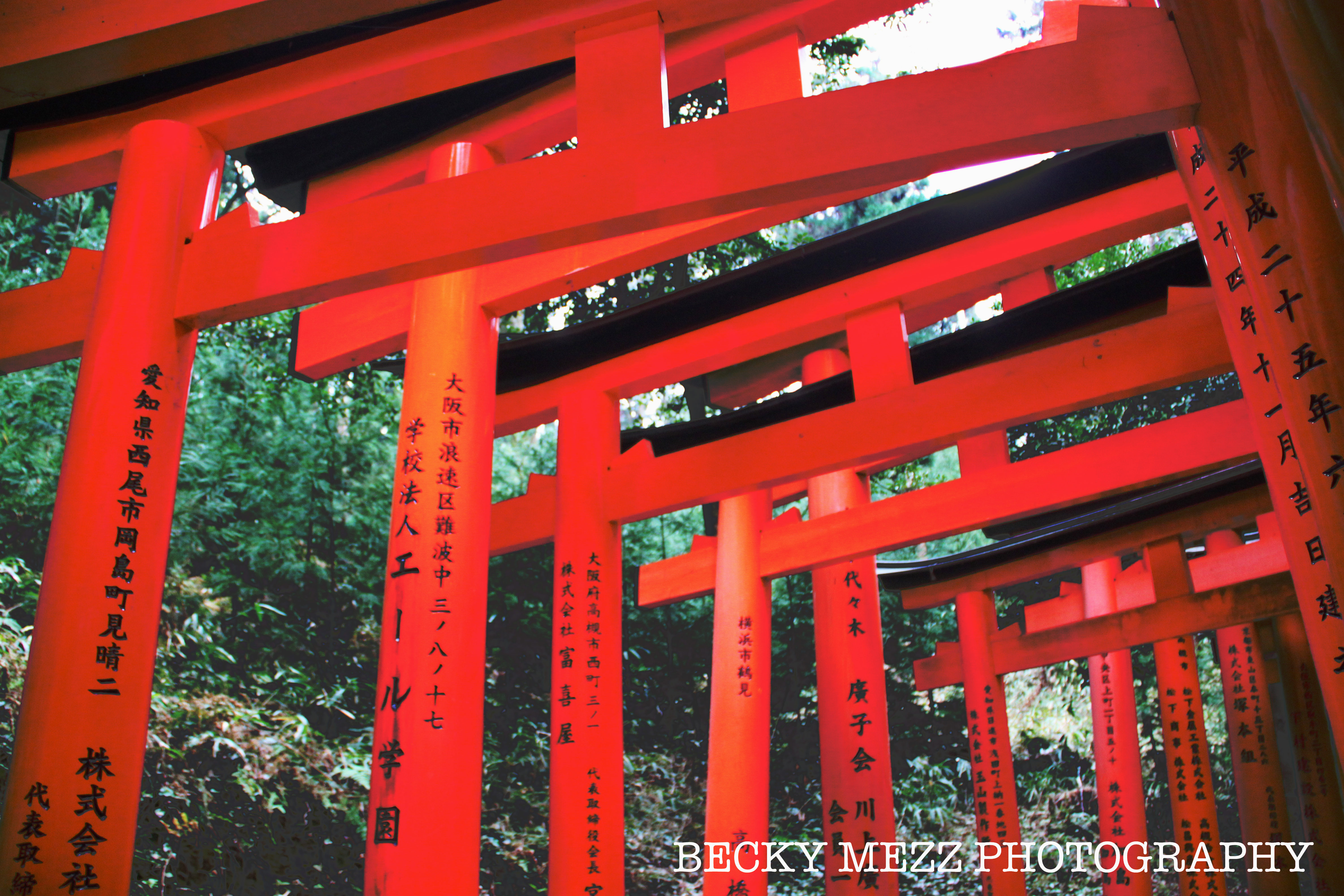 Orange Shinto gates of Inari Temple